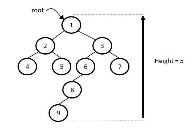 Height of a tree example